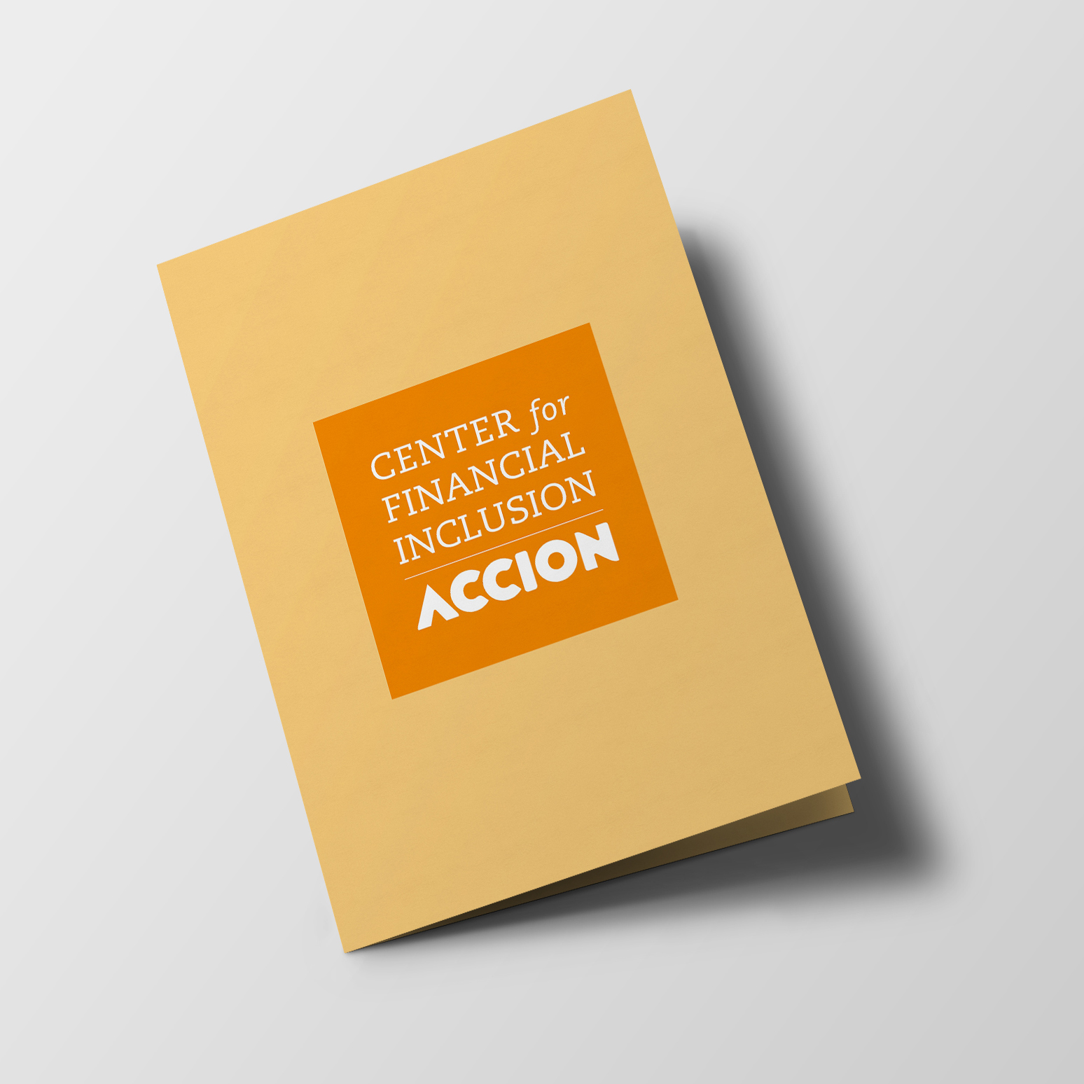Centre for Financial Inclusion ACCION